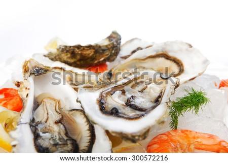 Fresh seafood on ice macro - stock photo