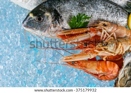 Fresh seafood placed on ice drift - stock photo