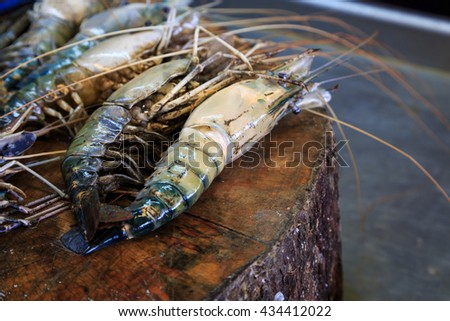 fresh shrimp prepared for sea food - stock photo