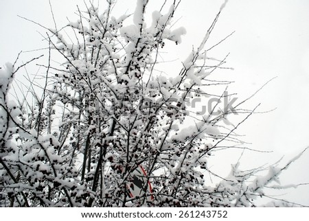 Fresh snow cover, at winter time in Vilnius city. Lithuania. - stock photo