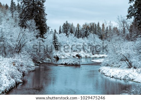 Fresh snow in late autumn on Whitefish River, Montana