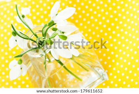 Fresh snowdrops in transparent vase on yellow napkin isolated on white - stock photo