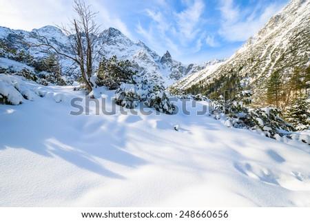 Fresh snowfall near frozen Morskie Oko lake in winter, Tatra Mountains, Poland - stock photo