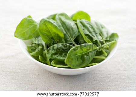 Fresh spinach in a bowl on white background