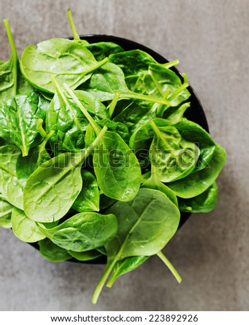 Fresh Spinach. Shallow Depth of Field. - stock photo