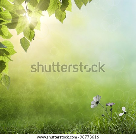 Fresh Spring bokeh background - stock photo