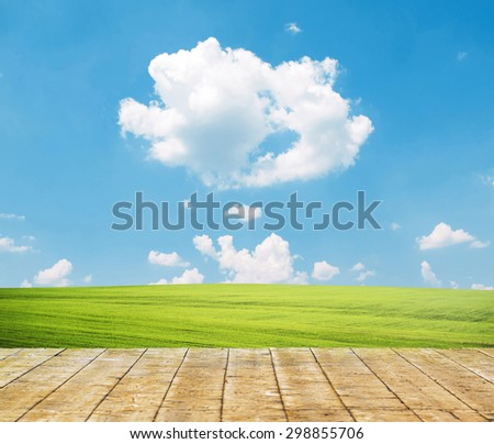 Fresh spring green grass with blue sky and wooden floor - stock photo