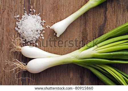 Fresh spring onion with salt close up shoot - stock photo