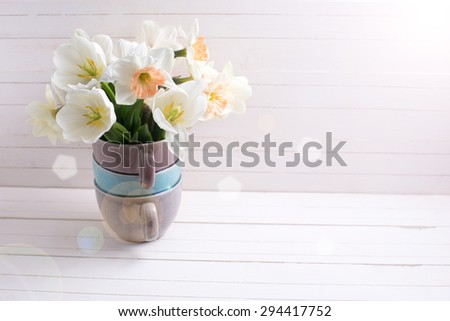 Fresh spring  pink daffodils  and white tulips flowers in vase in ray of light  on white wooden planks. Selective focus. Place for text. - stock photo