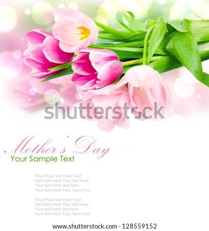 Fresh spring tulip flowers isolated on white - stock photo