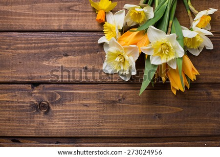 Fresh  spring yellow narcissus and  tulips flowers  on brown  painted wooden planks. Selective focus. Place for text.  - stock photo