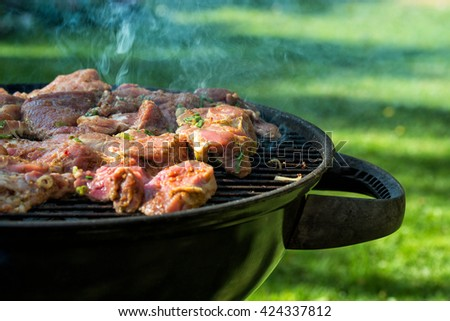 Fresh steaks grilled on the barbecue grill outdoors - stock photo