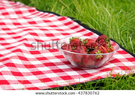 Fresh strawberries in a bowl on a picnic blanket.