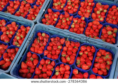 Fresh Strawberries in plastic crates displayed at fruit market stall - stock photo