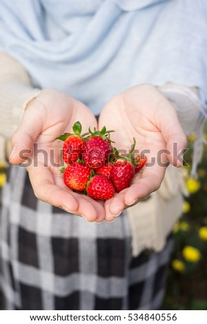 Fresh strawberries. Woman holding strawberry in hands.baby mom