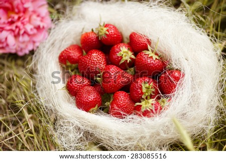 Fresh strawberry fruit summer picnic, organic strawberries, selective focus, series - stock photo