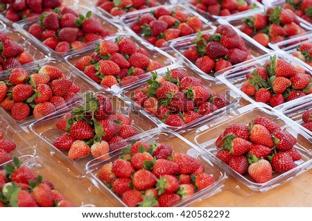 Fresh Strawberry packed