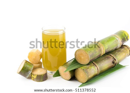 Fresh sugar cane juice in glass on white background