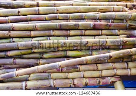 fresh sugarcane in Delhi bazaar, India background - stock photo