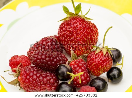 Fresh summer berries on the plate in the garden - stock photo