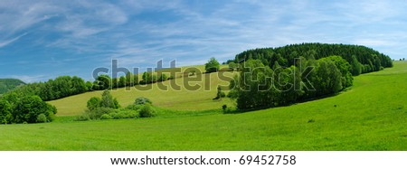 Fresh summer meadow - stock photo