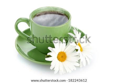 fresh tea camomile flowers - stock photo