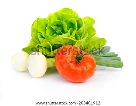 Fresh tomatoes and green salad with onion isolated on white background - stock photo