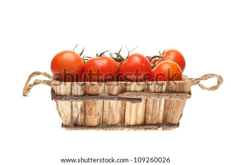 fresh tomatoes on a vine in a wooden basket on a white background - stock photo