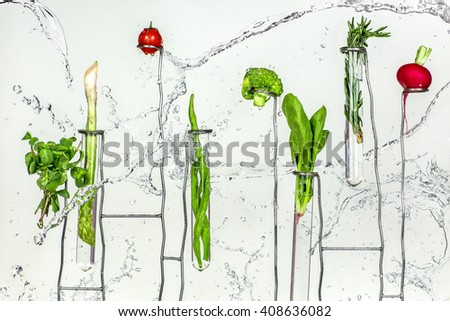 Fresh tomatoes, radishes, broccoli, greens, lettuce in splash water  - stock photo