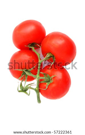 Fresh tomatoes twig on a white background