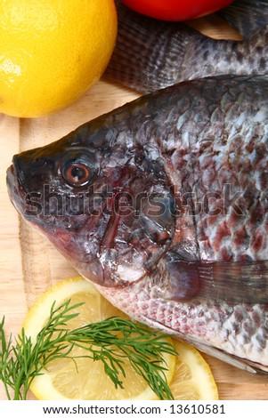 Fresh Ttilapia with tomato, lemon, dill on cutting board.  St. Peter's fish. - stock photo