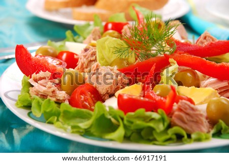 fresh tuna salad with eggs and vegetables - stock photo