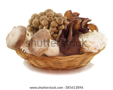 Fresh variety mushroom in basket of isolated, white background - stock photo