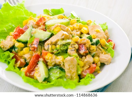 fresh vegetable salad with chicken - stock photo