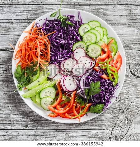 Fresh vegetable salad with red cabbage, cucumber, radish, carrots, sweet peppers, red onion and parsley on a white plate. On light wooden rustic background - stock photo