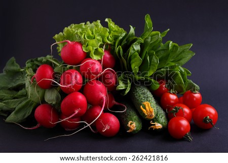 fresh vegetables and greens (cucumber, radish, tomato, lettuce, spinach) on a black background - stock photo