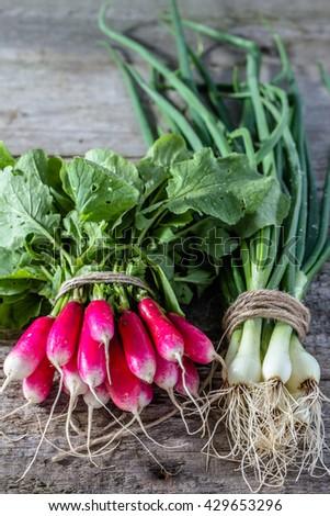 Fresh vegetables bunches, freshly harvested bio organic garden produce - stock photo