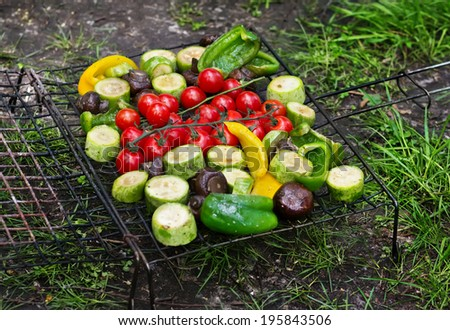 Fresh vegetables for grilling, picnic in summer outdoors - stock photo