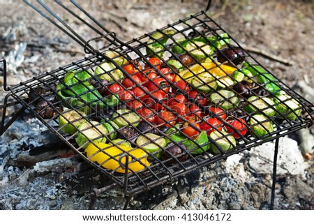 Fresh vegetables for grilling, picnic in summer outdoors. - stock photo