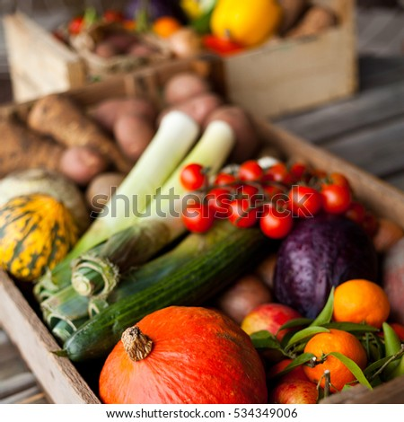 Fresh Vegetables In Boxes, Baskets. Tomatoes, Cucumber, Potatoes, Cabbage,  Pepper