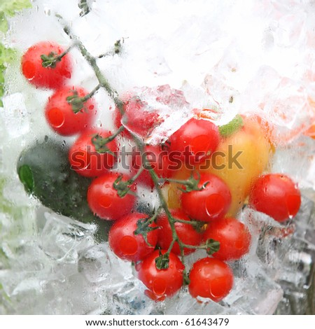 Fresh vegetables in ice - stock photo