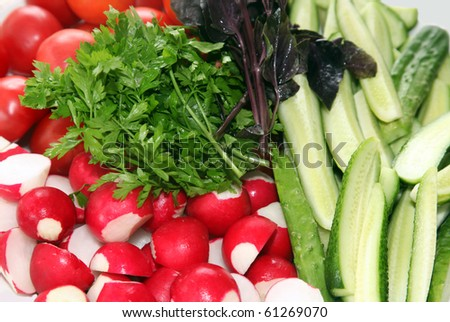 Fresh vegetables on a dish - a garden radish, tomatoes, cucumbers and greens