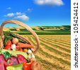 Fresh vegetables on the fields - stock photo