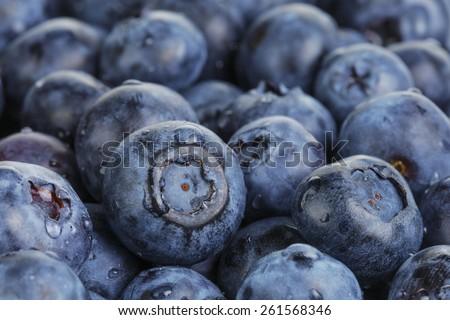 fresh washed wet blueberries - stock photo