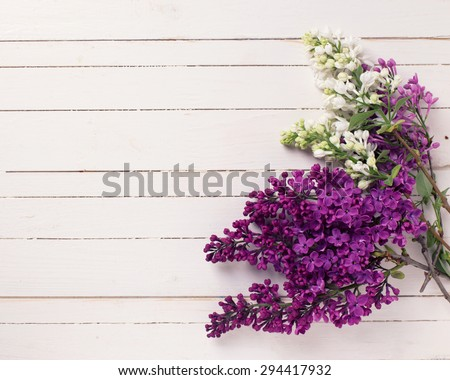 Fresh white and violet lilac flowers on white painted wooden planks. Selective focus. Place for text. Toned image. - stock photo