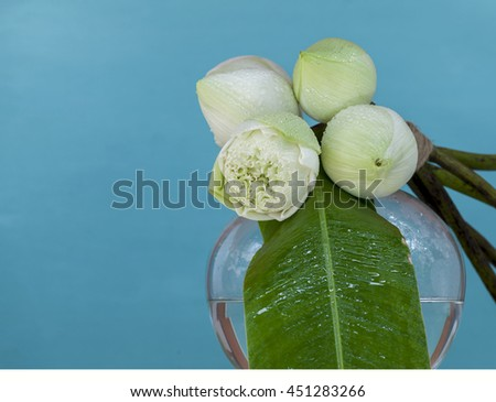 Fresh white lotus flower on round shape vase with space on blue background - stock photo