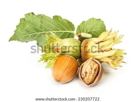 Fresh whole and cracked hazelnut - stock photo