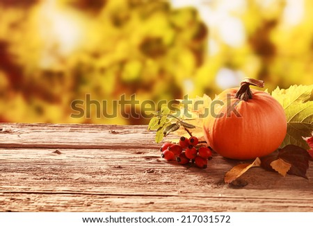 Fresh whole orange pumpkin and red rose hips standing on an old weathered rustic wooden table in an autumn garden with copyspace - stock photo