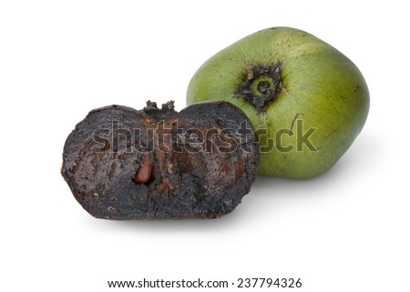 Fresh whole unripe and half black ripe sapote fruit on white background - stock photo
