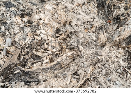 Fresh wood ash texture, may use as a background